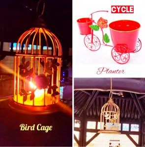 Combo( 2 Bird cages + 1 cycle planter