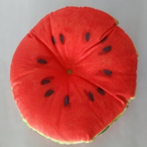 Watermelon Cushion